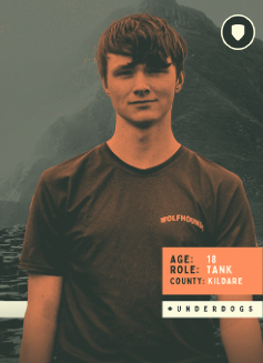 """""""Dive-Rein"""" – Interview with Liam O'Donnell"""